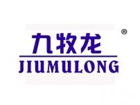九牧龙;JIUMULONG