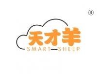 天才羊;SMARTSHEEP